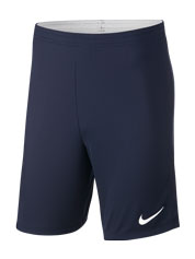 Nike Training Shorts Detail Page