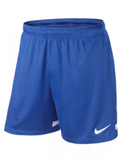 Nike Dri-Fit Knit Shorts Offer Detail Page